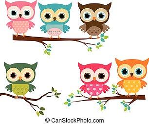 mignon, branches, arbre, coloré, hiboux