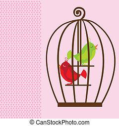 mignon, cage, oiseaux