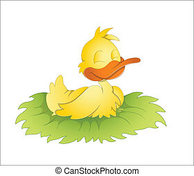 mignon, canard