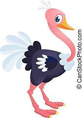 mignon, caractère, book., vecteur, illustration, chlidren, dessin animé, ostrich.