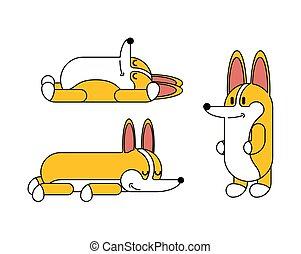 mignon, cartoon., set., chien, illustration, chouchou, vecteur, petit, corgi