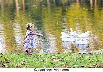 mignon, chasser, parc, automne, bébé, sauvage, oies, girl