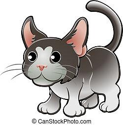 mignon, chat domestique, vecteur, illustration