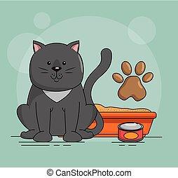 mignon, chat sable