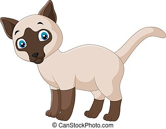 mignon, chat siamois, fond, blanc, dessin animé
