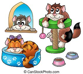 mignon, chats, collection