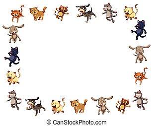 mignon, chats, frontière, chiens, gabarit