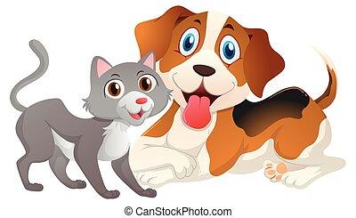 mignon, chien blanc, fond, chat