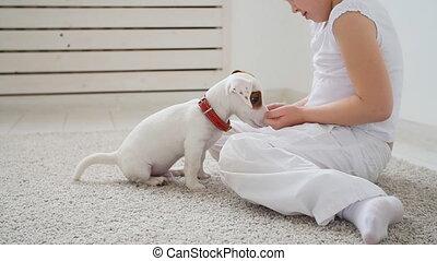 mignon, chouchou, concept., chien, jouer, intérieur, maison, blanc, girl
