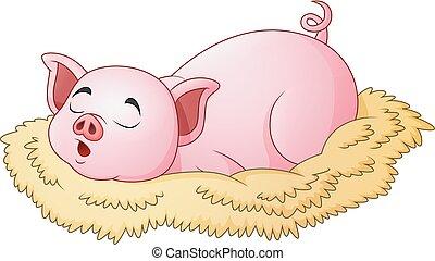 mignon, cochon, dessin animé, dormir
