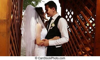 mignon, couple, bras, tenue, chaque, autre
