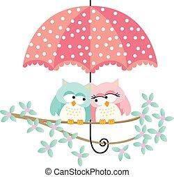 mignon, couple, hiboux, parapluie, sous