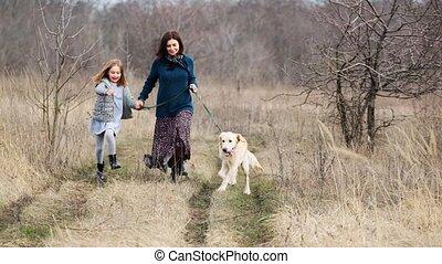 mignon, courant, nature, chien