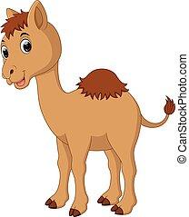 mignon, dessin animé, chameau