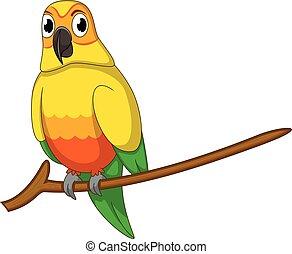 mignon, dessin animé, perroquet