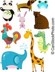 mignon, différent, ensemble, animaux, planche, blanc