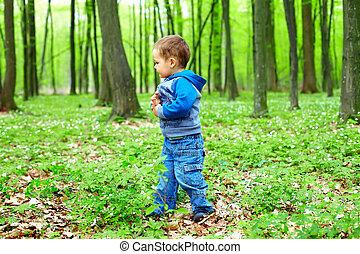 mignon, dorlotez garçon, marche, dans, printemps, forêt