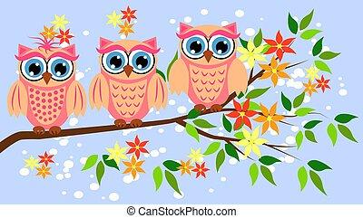 mignon, douches, girls., owls., faire la fête, dorlotez fille