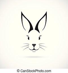 mignon, ears., lapin, grand
