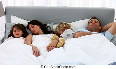 mignon, ensemble, famille, dormir