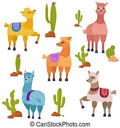 mignon, ensemble, lamas, vecteur, caractères, dessin animé, cactus.