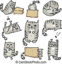 mignon, ensemble, poses., vecteur, divers, chats