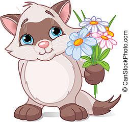 mignon, fleurs, chaton