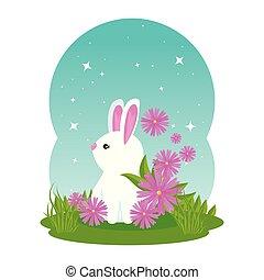 mignon, fleurs, jardin, lapin