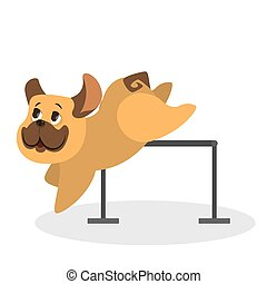 mignon, fourrure, brun, rigolote, caractère, chien, jumping., chiot
