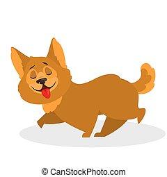 mignon, fourrure, brun, rigolote, marche., caractère, chien, chiot