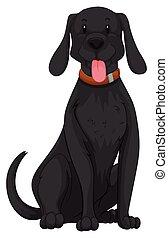 mignon, fourrure, chien, noir