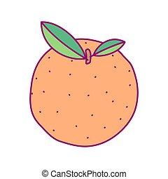 mignon, fruit, vecteur, dessiné, clipart
