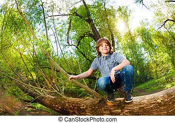 mignon, garçon, arbre, parc, coffre, baissé