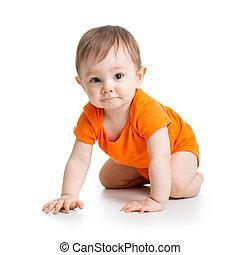 mignon, garçon, isolé, fond, ramper, bébé, blanc