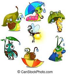 mignon, gros plan, ensemble, illustration., insectes, isolé, joyeux, arrière-plan., vecteur, blanc, dessin animé