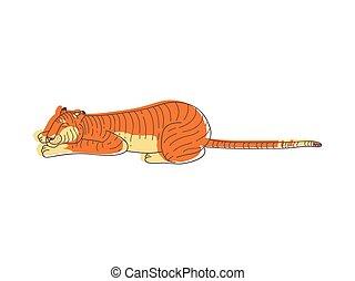 mignon, ground., avide, coat., cat., dormir, grand, sauvage, vecteur, conception, animal, orange, dessiné, main, tigre