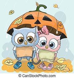 mignon, halloween, deux, hiboux, dessin animé, carte