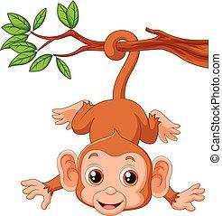 mignon, hangin, arbre, singe