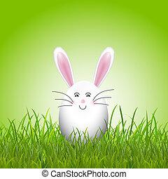 mignon, herbe, oeuf, lapin, paques