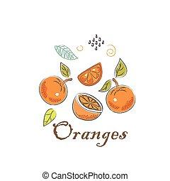 mignon, icône, scandinave, main, style., illustration, dessiné, oranges., vecteur