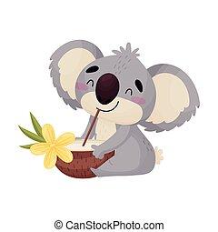 mignon, koala, cocktail., illustration, arrière-plan., vecteur, blanc, humanized, dessin animé, boissons