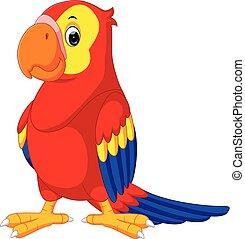 mignon, macaw, dessin animé
