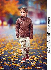mignon, marche, garçon, automne, rue, par, ville