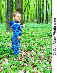 mignon, marche, garçon, printemps, forêt, bébé
