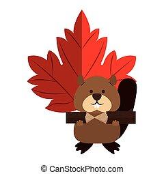 mignon, marmotte, feuille, érable, canadien