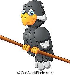 mignon, oiseau, dessin animé