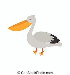 mignon, pelican., dessin animé