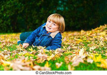 mignon, petit garçon, feuilles, pose, jaune, automne, portrait, herbe