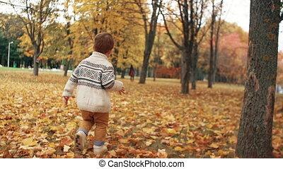 mignon, petit garçon, parc, courant, ruelle, automne, surprenant, par