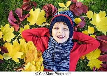 mignon, peu, automne, garçon, feuilles, parc, école, rire., pullover., chaud, mensonge, gosse, enfant, amusement, sourire, day., avoir, rouges, heureux